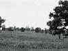 100Autosave-File vom d-lab2/3 der AgfaPhoto GmbH
